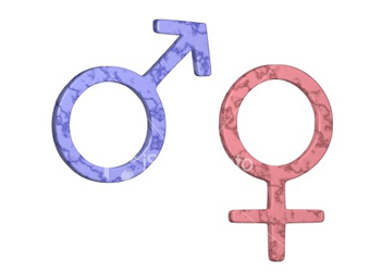 Boy or Girl Gender Prediction Quiz! Take The Online